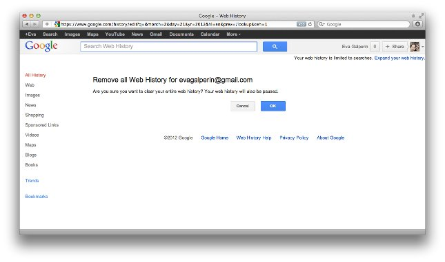 Final image for removing all web history from Google