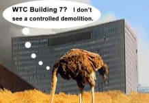 An ostrich sticks it head in the sand while Building 7 collapses in the background