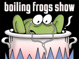 Frogs slowly boiling with look of slight apprehension